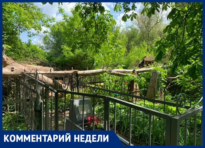 «Как можно говорить о почитании предков, если на кладбищах Ростова творится такое безобразие?» – эксперт регионального ОНФ