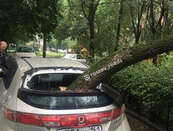 Стихия – разбушевалась: огромная ветка упала на автомобиль в Ростове