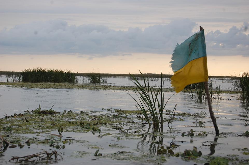 Украинские военные могут вернуть Донбасс за сутки