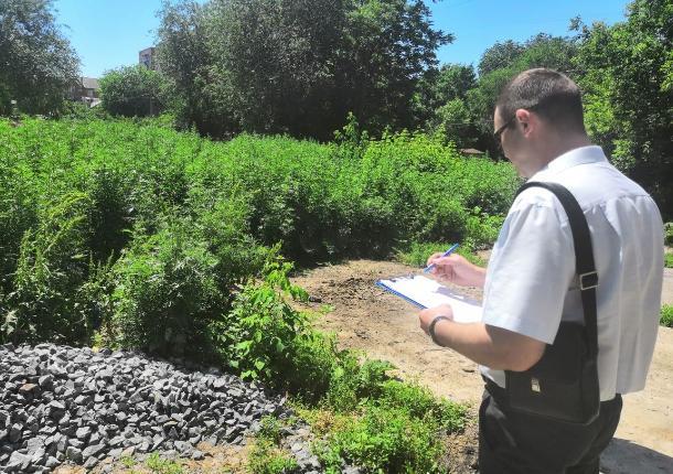 В Ростовской области из-за нескошенной травы чиновники выписали штрафов на полмиллиона рублей