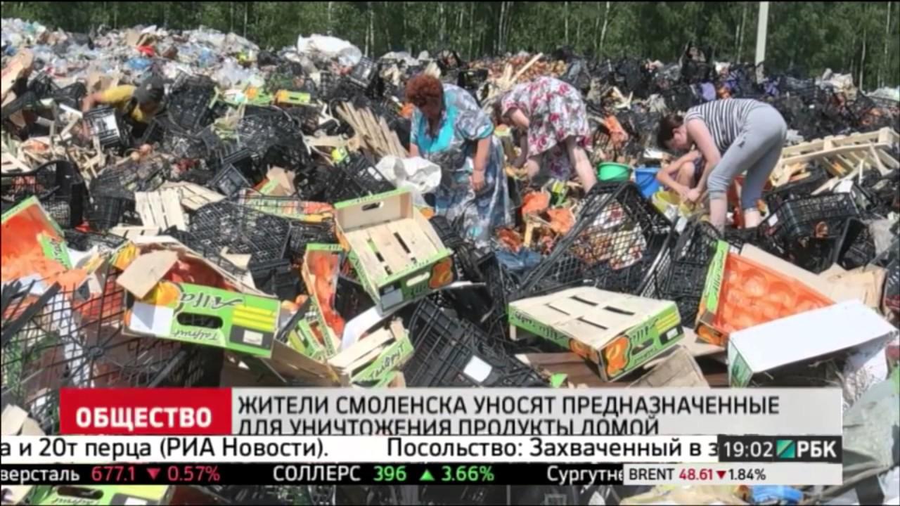 Роспотребнадзор предложил запретить уничтожение продуктов питания